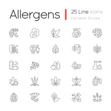 Allergy Cause Linear Icons Set. Queen Anne Lace. Timothy Grass. English Plantain. Sesame Seeds. Customizable Thin Line Contour Symbols. Isolated Vector Outline Illustrations. Editable Stroke