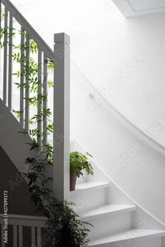White Staircase With Plants - fototapety na wymiar