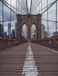 Brooklyn Bridge Emptied.