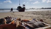 Fishing Boats On The Beach Of Punta Del Diablo