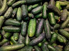 Lot Of Cucumber In The Market Closeup Photo