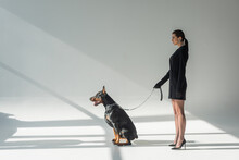 Side View Of Woman In Black Blazer Dress With Doberman On Chain Leash On Grey Background With Shadows