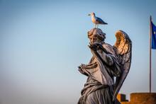 Seagull, Statue, Rome, Monument, Bird, Animal, Castel Sant'Angelo, Italy, Roma, Outdoors, Monument