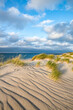 Sand dunes and beach grass on the North Sea coast, Germany