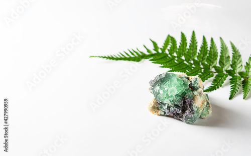 Canvas Healing Crystals and a fern branch