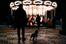 Rear View Of People With Dog On Street In Illuminated City By Carousel At Night