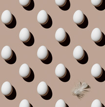 Chicken Eggs And Feather On Beige Background Pattern