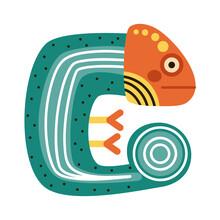 Cute Chameleon Amphibian