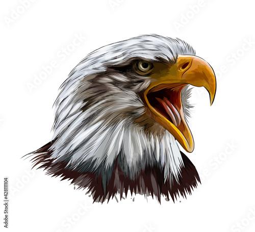 Carta da parati Bald eagle head portrait from a splash of watercolor, colored drawing, realistic