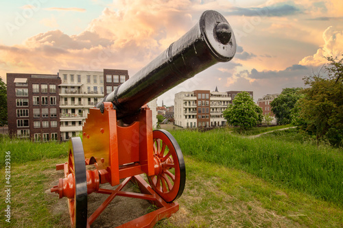 Fotografering old cannon in a fortress