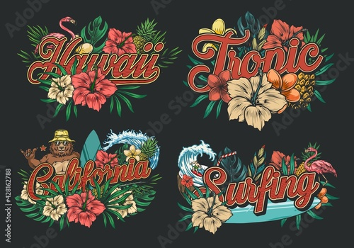 Fototapeta Summer surfing vintage colorful labels obraz