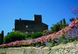prowansja, krajobraz, kammienny dom, błękitne niebo, róże i perowskia, cyprys