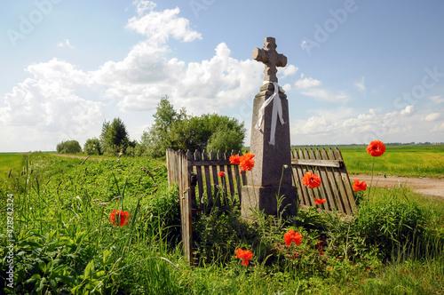 Fototapeta Pomnik ubrany w maki. obraz