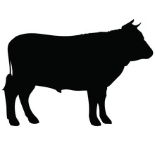 Black Silhouette Of A Cow