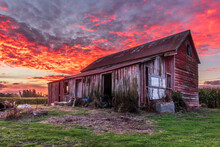 Red Shed Red Sky