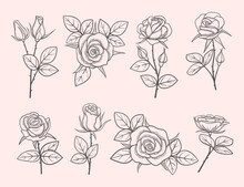 Collection Of Hand Drawn Roses. Detailed Flowers In Engraved Style. Sketch Of Flowers With Thorns And Leaves. Vector Illustration