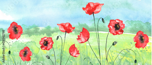 Watercolor painting, landscape of bright green grass, red poppy steppe,green, yellow flowers, plants, field, meadow against a blue sky. Logo, card for your design.Summer countryside landscape.