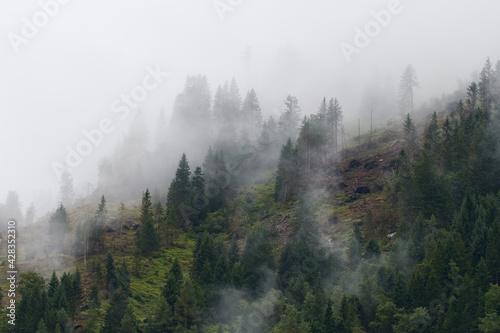 Fotografie, Obraz Herbst auf dem Umbrailpass