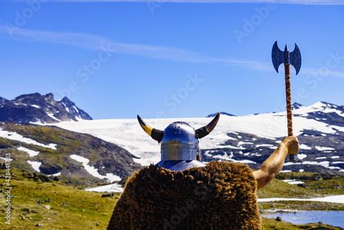 Fotografie, Obraz Viking warrior in mountain nature, Norway