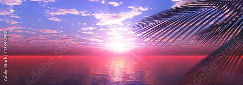 sunset sea palm landscape illustration - fototapety na wymiar