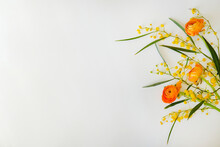 Flower Composition With Orange Ranunculus And Yellow Mimosa Branches. Visible Petal Structure. Bright Floral Arrangement Isolated On White. Top View, Close Up, Copy Space, Background.