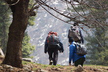 Traveling In The Mountains Of Himachal Pradesh, India