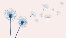 Flying Dandelion Flowers Beige