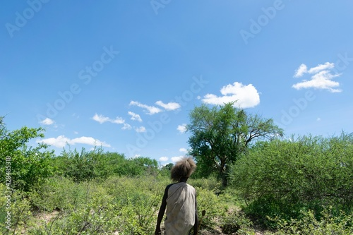 chasseur Hazabe solitaire Tapéta, Fotótapéta