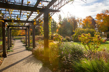 Backlit Image Of Colorful Autumn Garden With Wood Trellis Over A Brick Walking Path