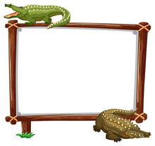 Empty Banner With Two Crocodiles On White Background