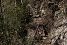 山奥の丸太橋