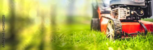 Fotografie, Obraz Lawn mower cut grass