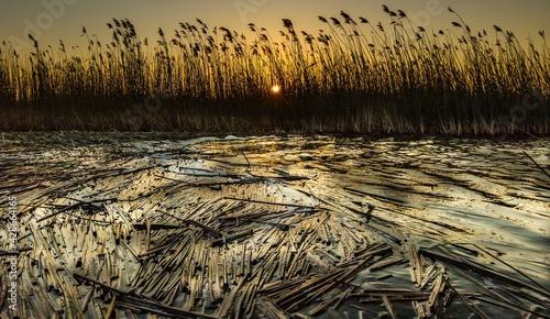 Obraz na plátně Sunset on the Lake