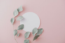 Round Paper Card Mockup With Carnation Flowers, Eucalyptus. Holiday Concept With Place For Text On A Pink Pastel Background.
