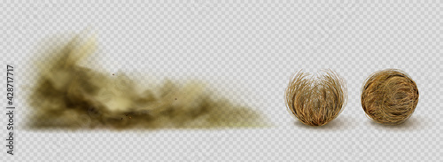 Tablou Canvas Tumbleweeds and sandstorm cloud, desert plants and sand dust