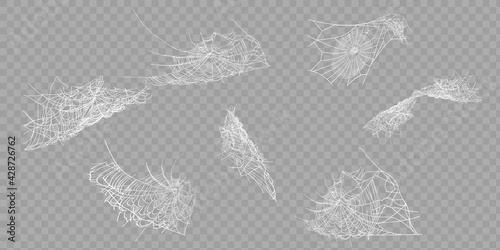 Obraz na plátně Collection of Cobweb, isolated on black, transparent background