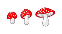 Mushroom Icon Set. Amanita Muscaria Fly Agaric Sign Collection. Magic Mushroom Symbol. Isolated Vector Illustration