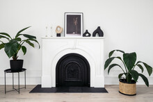 Houseplants And Home Decor In Room With Fireplace