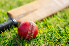 Cricket Bat And Ball On Cricket Pitch