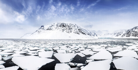 Mountains, fjords and pack ice panorama, Svalbard