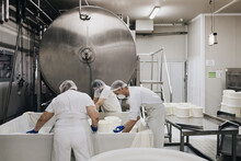 Manual Workers In Cheese And Milk Dairy Production Factory. Traditional European Handmade Healthy Food Manufacturing.