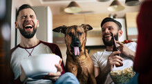 Two Happy Excited Bearded Friends Watching TV Or Some Sport Match With Dog While Sitting On The Couch At Home On Weekend