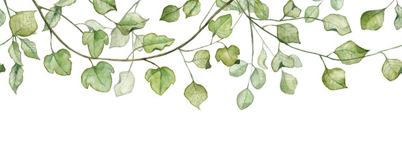 Seamless banner with green leaves. Watercolor hand painted botany
