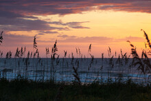 Sunrise With Sea Oats On The Dunes