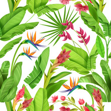 Jungle Tropical Seamless Pattern, Floral Exotic Vector Background, Green Banana Leaves, Exotic Flowers. Nature Rainforest Green Summer Texture, Wild Garden Wrapping Paper. Jungle Pattern On White