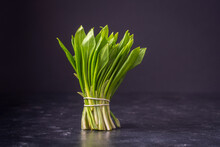 Bunch Of Freshly Picked Green Wild Garlic Leaves On Black Background. Healthy Leaves Of Green Wild Leek