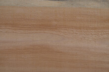Untreated Wood Texture. Copy Space.