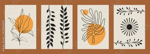 фотография Abstract minimalist plant backgrounds