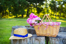 Picnic On Nature