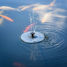 A Flock Of Colorful Koi Carps By The Surface And A Solar Fountain.